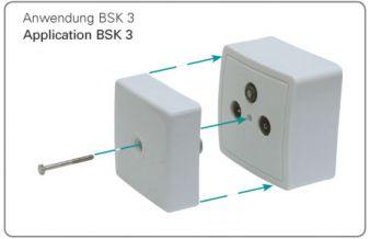 BSK 3